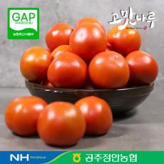 정안농협 공선 토마토 5kg (대/1번/2번/랜덤발송)